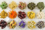 Фото 31 Иссоп или синий зверобой: обзор целебных свойств растения и его использование в кулинарии