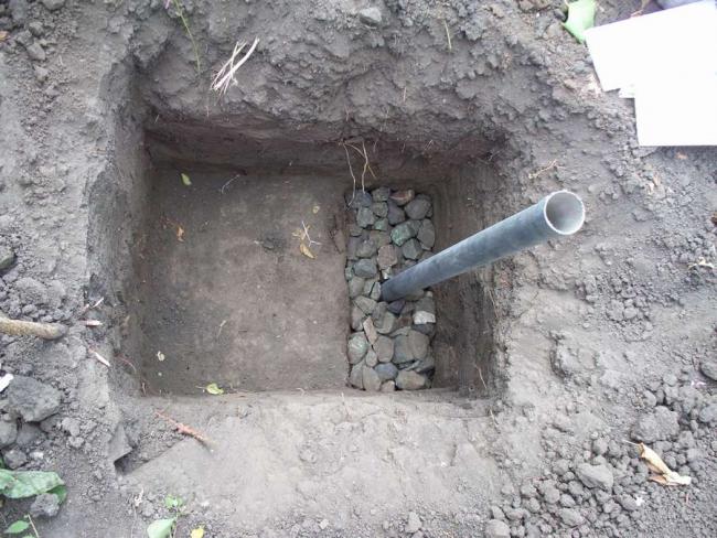 Установка трубы для полива и подкормки куста винограда
