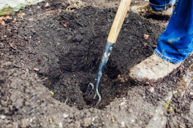 Копание ямы для посадки винограда