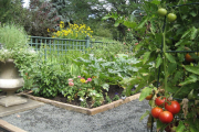 Фото 6 Ограждения для клумб и грядок: 70+ роскошных идей, которые преобразят ваш сад
