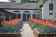 Фото 8 Ограждения для клумб и грядок: 70+ роскошных идей, которые преобразят ваш сад