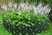Фото 10 Ограждения для клумб и грядок: 70+ роскошных идей, которые преобразят ваш сад