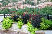 Фото 11 Ограждения для клумб и грядок: 70+ роскошных идей, которые преобразят ваш сад