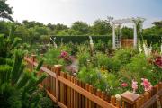 Фото 26 Ограждения для клумб и грядок: 70+ роскошных идей, которые преобразят ваш сад