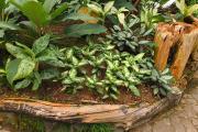 Фото 1 Ограждения для клумб и грядок: 70+ роскошных идей, которые преобразят ваш сад