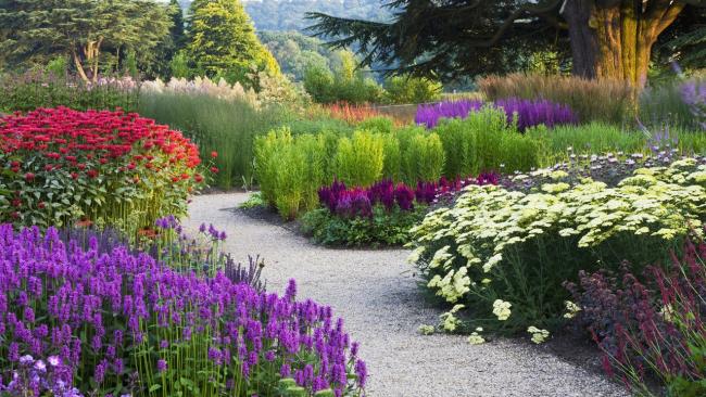 Контрастное сочетание различных видов цветов в саду загородного имения