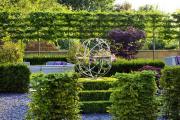 Фото 24 Быстрорастущая живая изгородь: комбинации и ландшафтные композиции своими руками