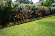 Фото 30 Быстрорастущая живая изгородь: комбинации и ландшафтные композиции своими руками