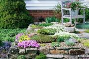 Фото 16 Как вырастить обриету? Ландшафтные дизайнеры и садоводы раскрывают все секреты