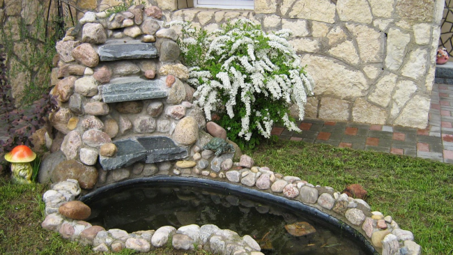 Симпатичный небольшой куст у маленького искусственного пруда
