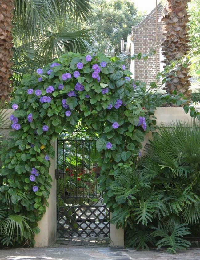 Цветочное оформление входных ворот