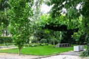 Фото 11 Катальпа: полезные свойства и как с ее помощью преобразить свой сад до неузнаваемости?