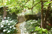 Фото 23 Клумбы из камней для сада: лучшие идеи и советы по декору от ландшафтных дизайнеров