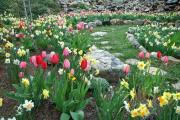 Фото 19 Клумбы из камней для сада: лучшие идеи и советы по декору от ландшафтных дизайнеров