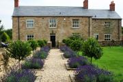 Фото 9 Клумбы из камней для сада: лучшие идеи и советы по декору от ландшафтных дизайнеров