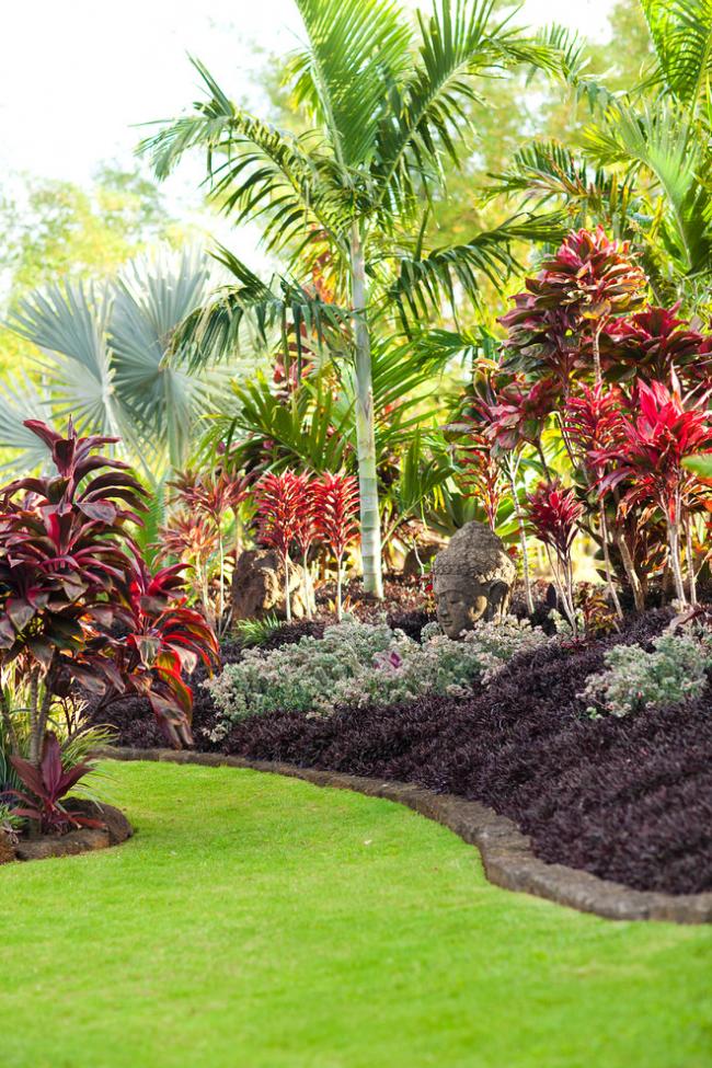 Роскошный сад из экзотических растений