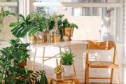 Фото 21 Складные стулья или спасение для маленьких кухонь: виды конструкций, плюсы и минусы