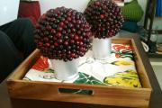 Фото 10 Топиарий из фруктов: мастер-класс по созданию аппетитного шедевра своими руками