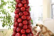 Фото 26 Топиарий из фруктов: мастер-класс по созданию аппетитного шедевра своими руками