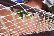 Фото 3 Безопасность в доме: как выбрать и установить защиту на лестницу от детей