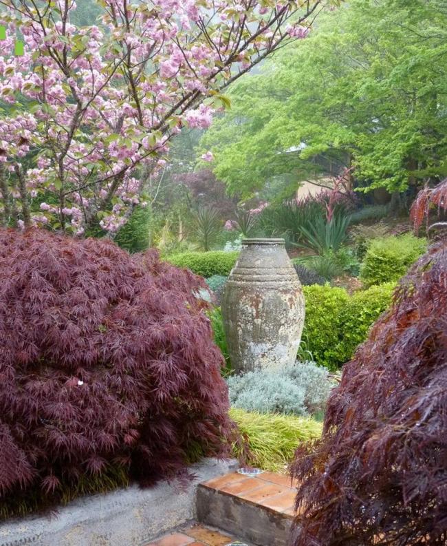 Изобилие тематической растительности в японском саду