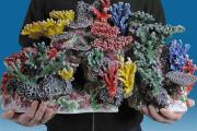 Фото 9 Оформление аквариума своими руками: акваскейпинг от азов к продуманной экосистеме