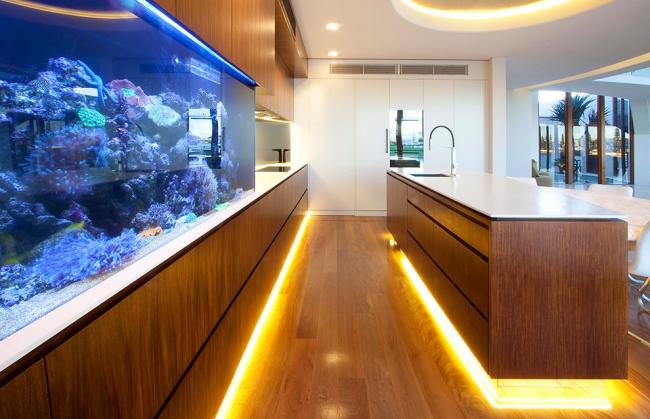 Коралловый риф за стеклом в интерьере кухни