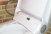 Фото 18 Автоматическая, с микролифтом или подогревом? Выбираем идеальную крышку-сиденье для унитаза