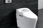 Фото 20 Автоматическая, с микролифтом или подогревом? Выбираем идеальную крышку-сиденье для унитаза