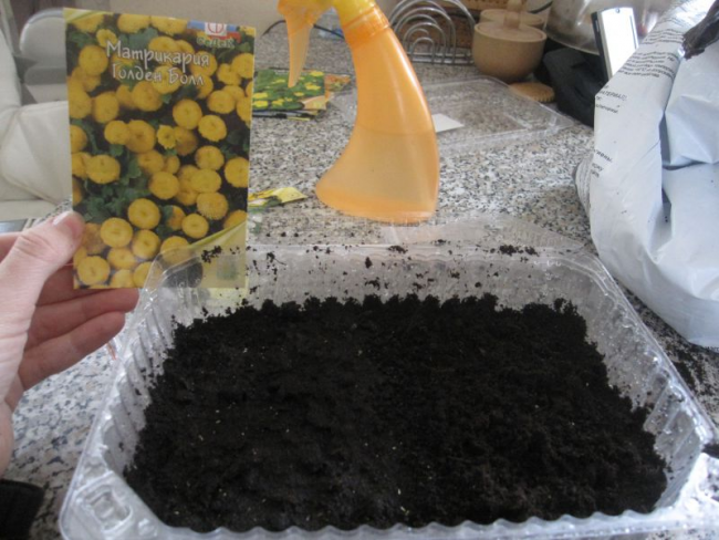 Размножение с помощью семян