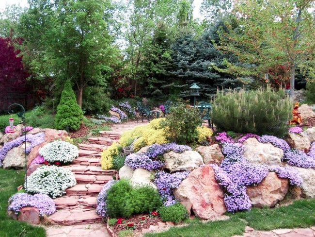 Альпинарий служит ярким украшением сада, выделяясь на фоне зеленого газона