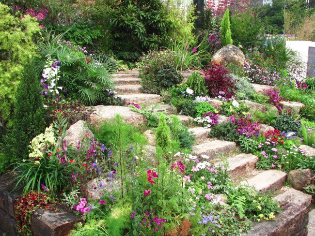 Природный ландшафт позволил с небольшими усилиями создать цветущую каменную горку