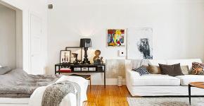 Квартира-студия — что это такое и как создать стильный дизайн при минимальных затратах? Разбираемся в квартирном вопросе фото