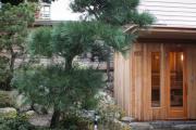 Фото 7 Парная в удовольствие: как выбрать правильные деревянные двери для бани?