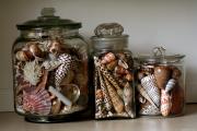 Фото 22 Море хендмейда: что можно сделать из ракушек? 60+ потрясающих идей для дома