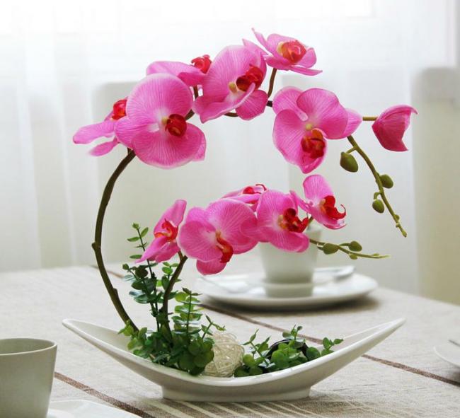 Красивая небольшая композиция с орхидеей