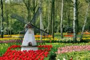 Фото 3 Сад без проблем: делаем декоративную мельницу своими руками