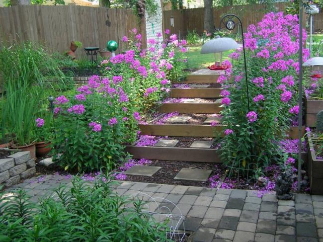 Следую советам по уходу за растениями, можно длительное время наслаждаться красотой участка