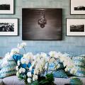 Что лучше – обои или покраска стен? Сравнение покрытий, плюсы-минусы и советы дизайнеров фото