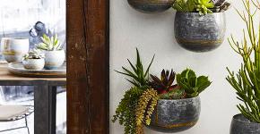 Кашпо, вазоны и горшки из бетона: мастер-класс по изготовлению своими руками фото