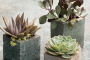 Фото 12 Кашпо, вазоны и горшки из бетона: мастер-класс по изготовлению своими руками