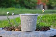 Фото 17 Кашпо, вазоны и горшки из бетона: мастер-класс по изготовлению своими руками