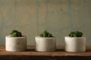 Фото 22 Кашпо, вазоны и горшки из бетона: мастер-класс по изготовлению своими руками