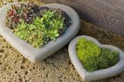 Фото 2 Кашпо, вазоны и горшки из бетона: мастер-класс по изготовлению своими руками