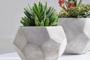 Фото 3 Кашпо, вазоны и горшки из бетона: мастер-класс по изготовлению своими руками