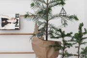 Фото 17 Как стильно украсить елку к 2019 году: создаем сказку своими руками