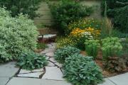 Фото 2 Комнатный и садовый молочай (60+ фото видов с названиями): посадка и уход за растением