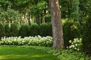 Фото 24 Комнатный и садовый молочай (60+ фото видов с названиями): посадка и уход за растением
