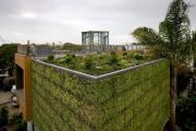 Фото 4 Экологическая архитектура: 5 поразительных эко-проектов, которые подружились с самой природой