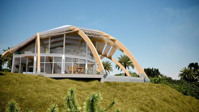 Дизайнерское решение - дугообразная деревянная крыша поверх строения